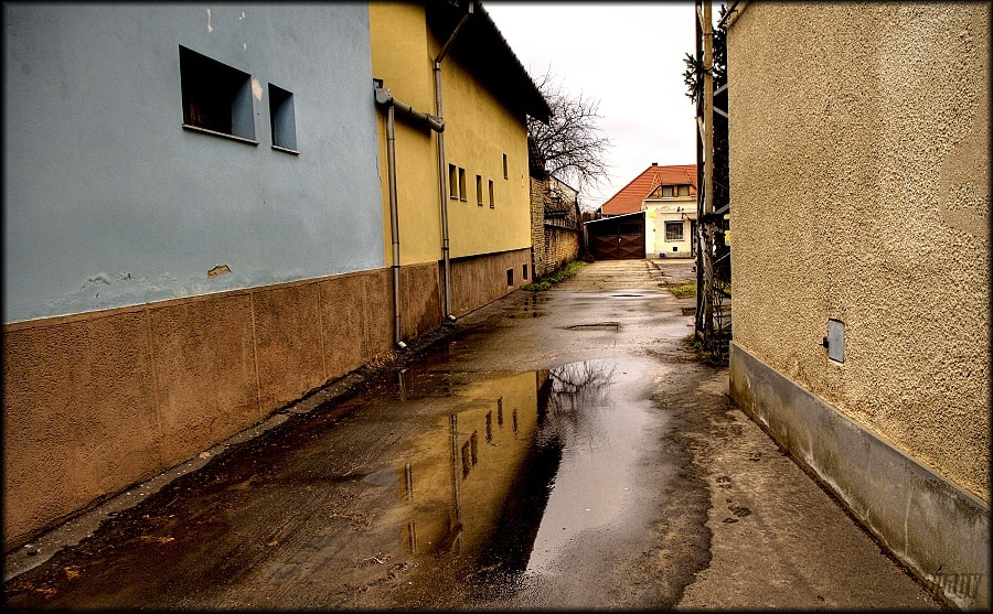 Photograph Puddle  by Merl Antal György on 500px