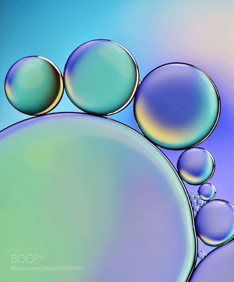 Photograph Pastel by Heidi Westum on 500px