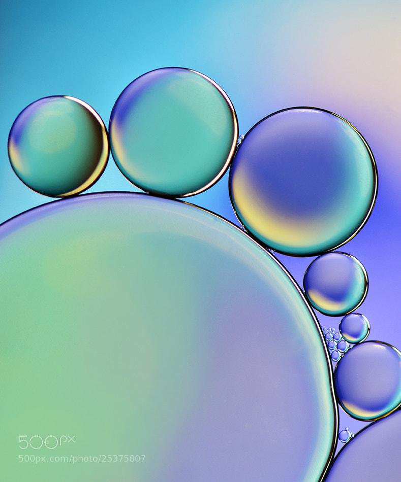 Photograph Pastel by Heidi Westum on 500px