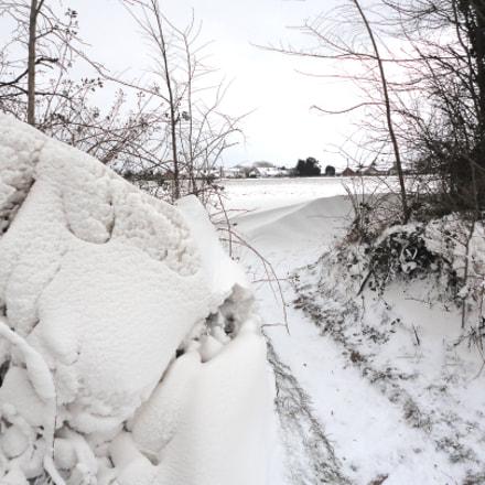 Martham snow, Sony DSC-W350