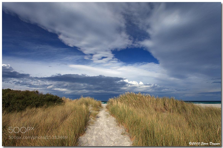 Photograph Denison Beach by Steve Daggar on 500px
