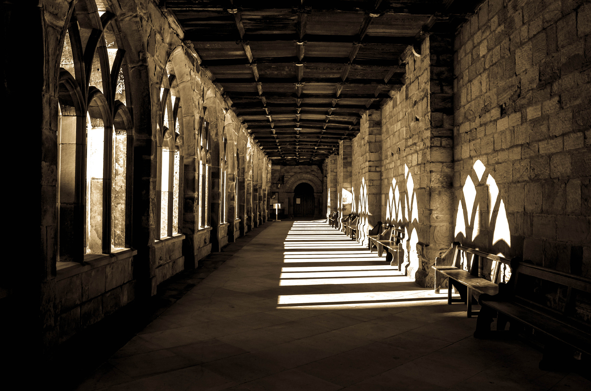 Photograph Stay out of the Shadows by Sarah johnson on 500px
