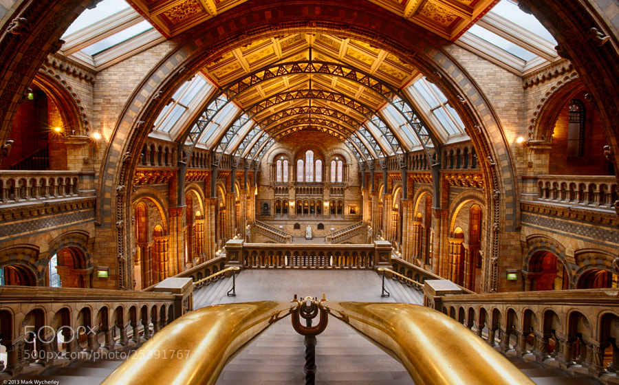 Photograph The cathedral of nature by Mark Wycherley on 500px