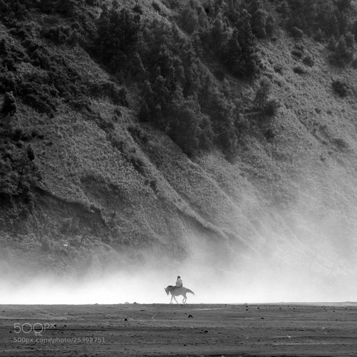 Photograph Through the dust by Mora lubis on 500px