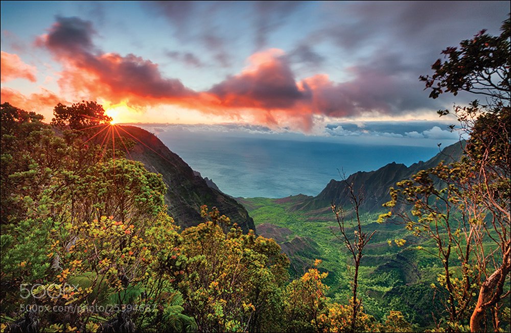 Photograph Halalau Valley by Don Smith on 500px