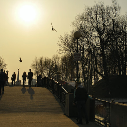 Birds and people, Nikon D90, AF Nikkor 35mm f/2D