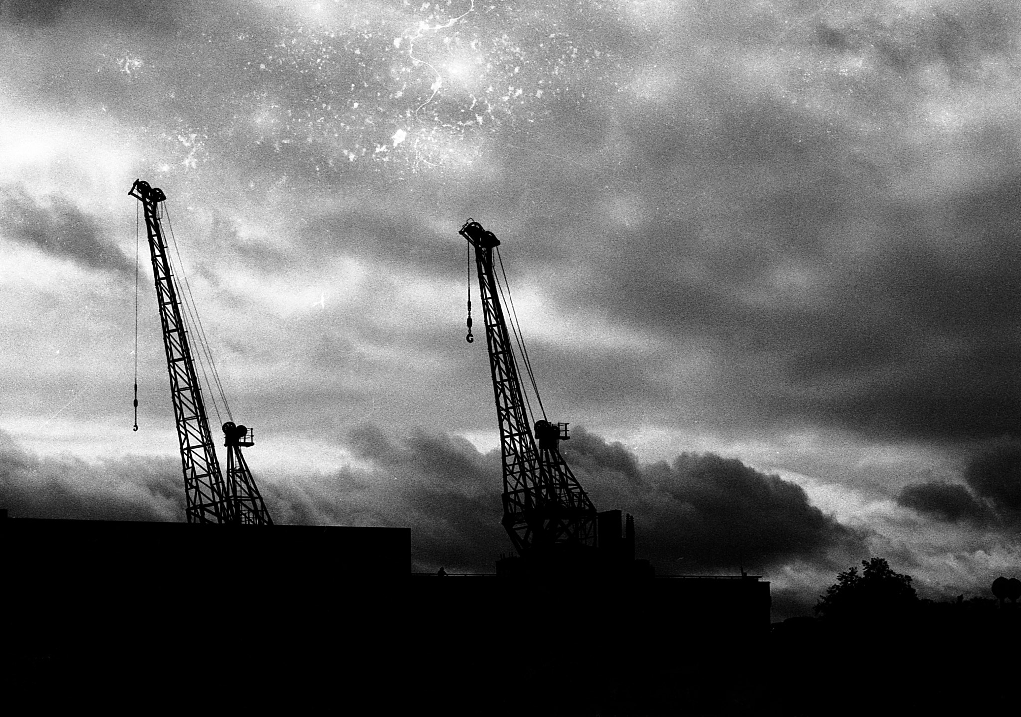 Photograph Between Cranes by Odysseas Pappas on 500px