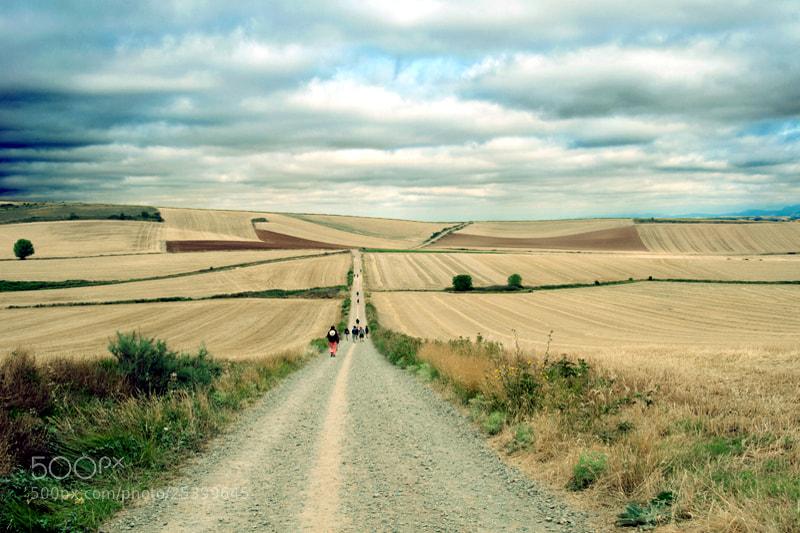 Camino de Santiago 2012  Azofra - Grañón III _______________________________  Pero habiamos entrado en Agosto y algo habia cambiado,,,,,   El Camino se había convertido en una procesión ,,,