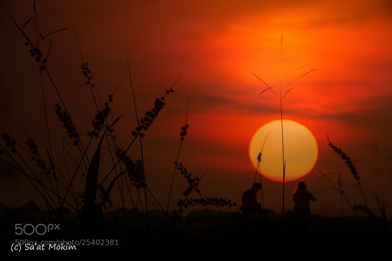 Photograph The Sunset by Mohd Sa'at Haji Mokim on 500px