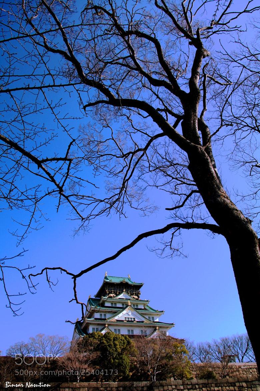 Photograph The Symbol of Osaka by Binsar Nasution on 500px