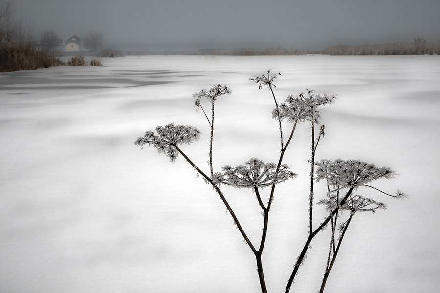 Photograph lac hiver by Gilbert Claes on 500px