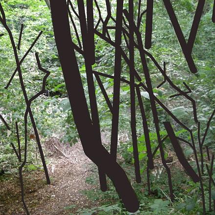Tree Superimposition, Nikon COOLPIX L12