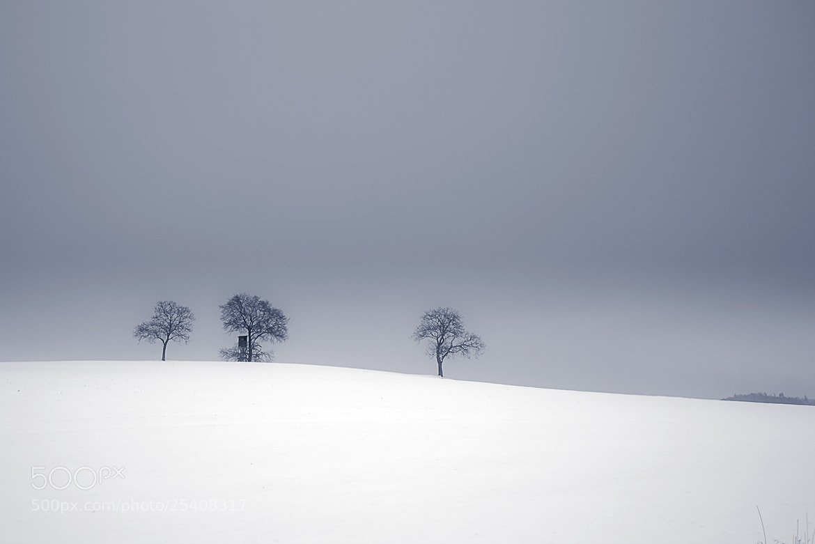 Photograph Hazy Shade of Winter V by Claus Roesler on 500px