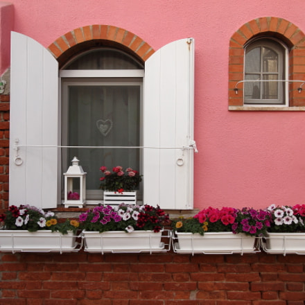 window & flowers, Canon EOS 7D, Canon EF-S 10-22mm f/3.5-4.5 USM