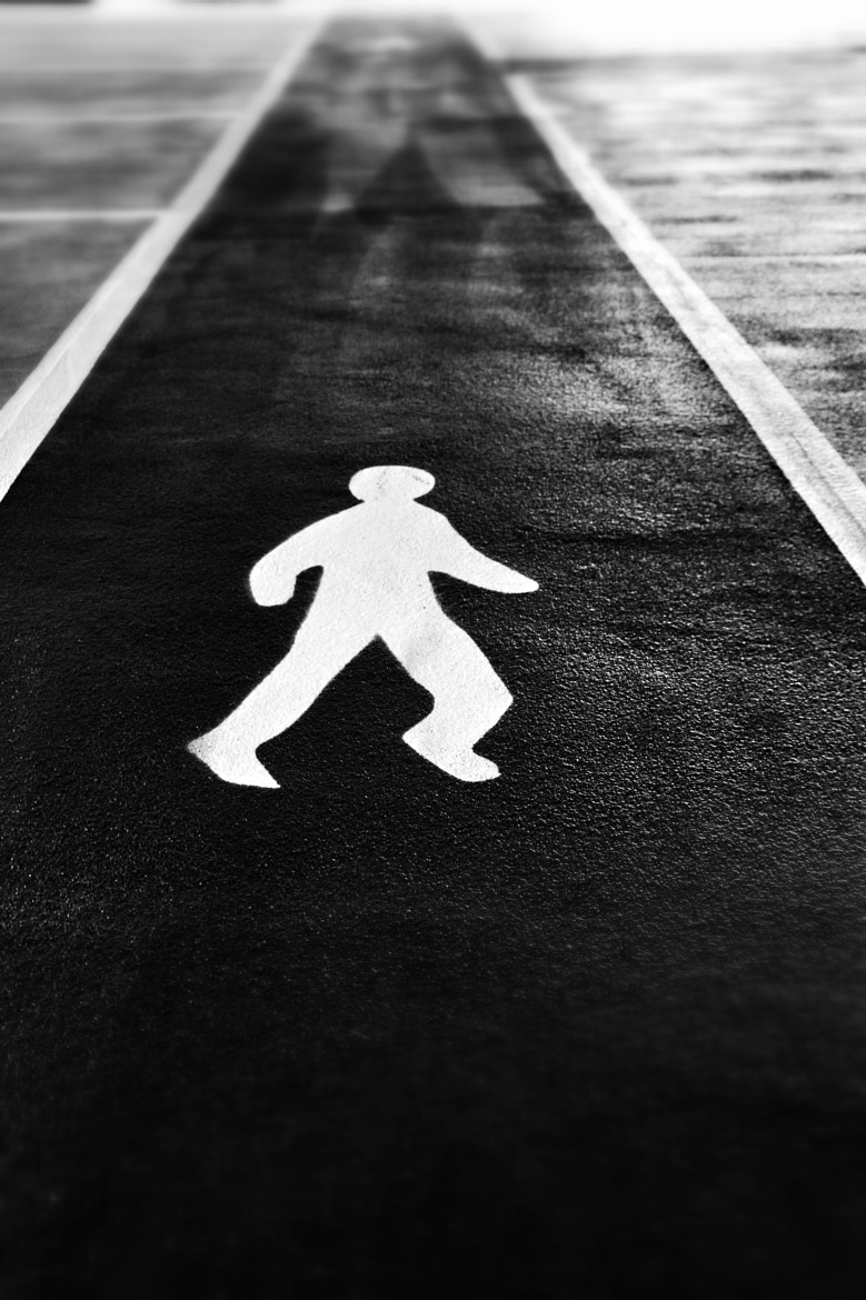 Photograph Walk this way by Adam Lay on 500px