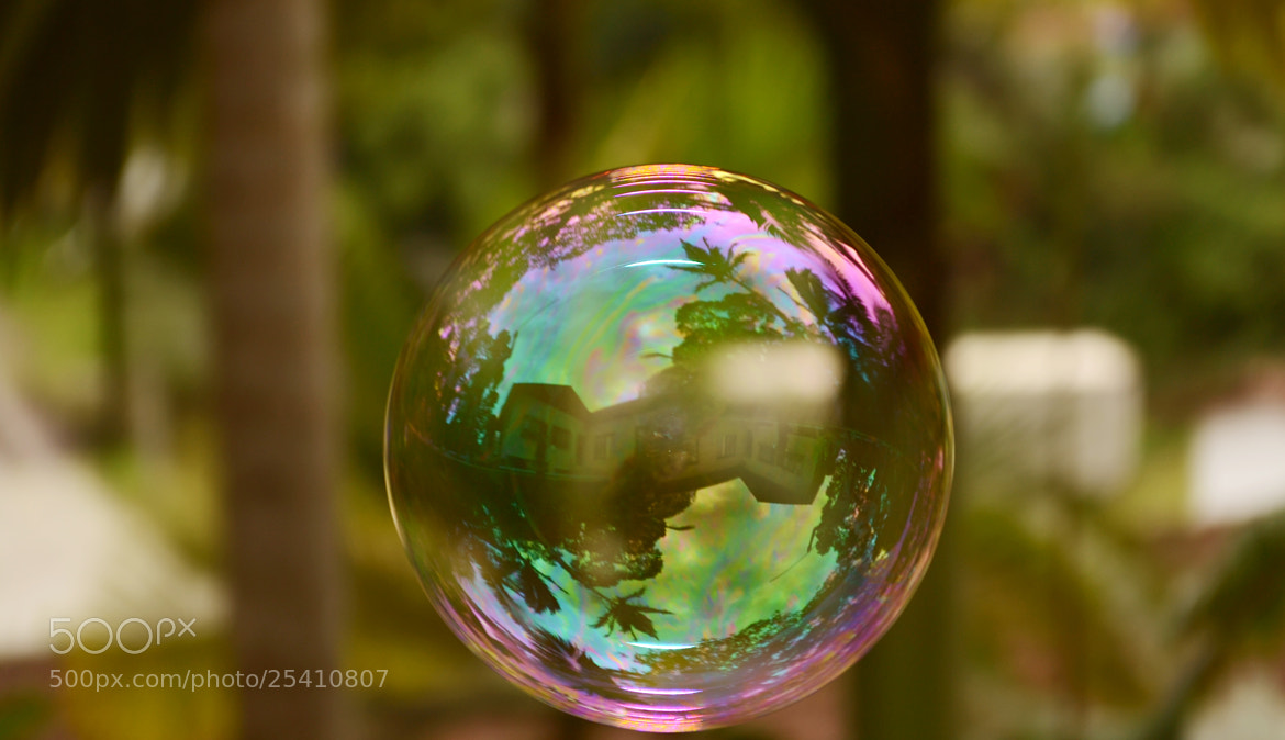 Photograph House in a Bubble by Aidan S. on 500px