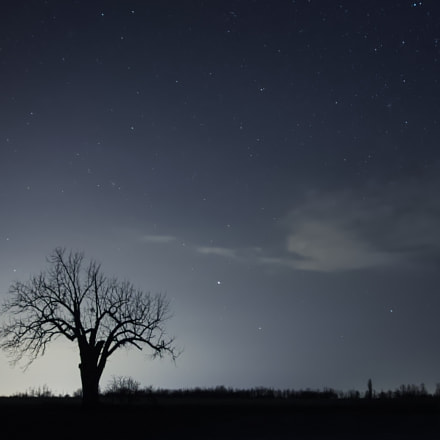Hunting fields, Canon EOS 1100D, Sigma 17-70mm f/2.8-4.5 DC Macro