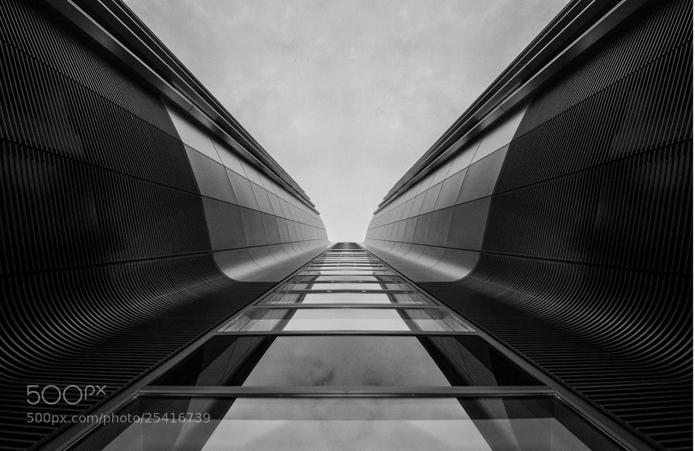 Photograph upwards b/w by Axel Kuenne on 500px