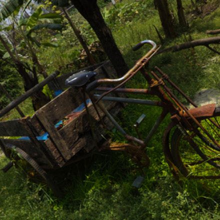 An abandoned tricycle, Sony DSC-W620