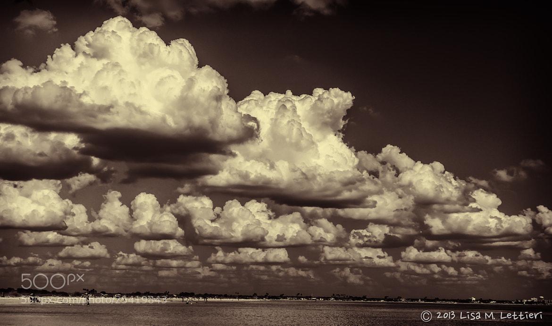 Photograph The Sky by Lisa Lettieri on 500px