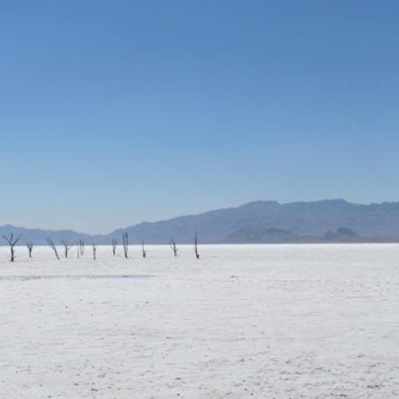 Salt lake, Canon POWERSHOT SX20 IS