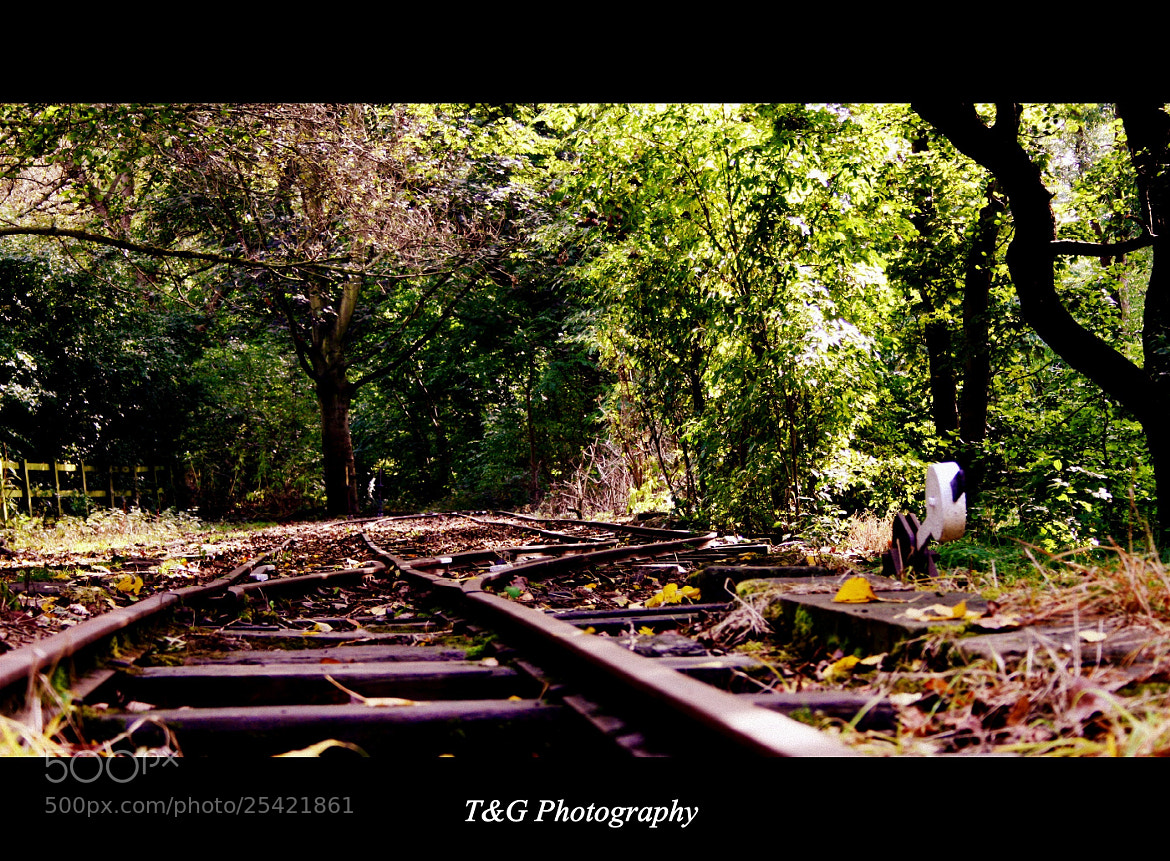 Photograph End of the line by T&G Photography  on 500px