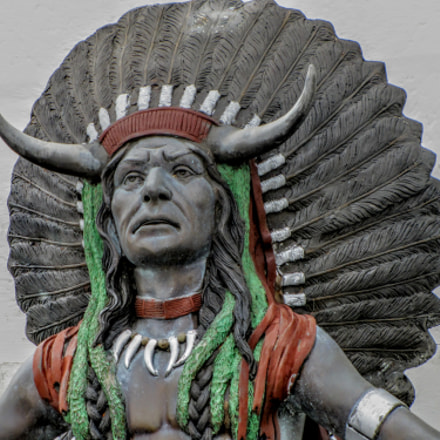 The Chief, Canon POWERSHOT SX20 IS