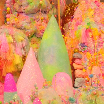 Wonders of Pink, Nikon D300, AF Zoom-Nikkor 24-85mm f/2.8-4D IF