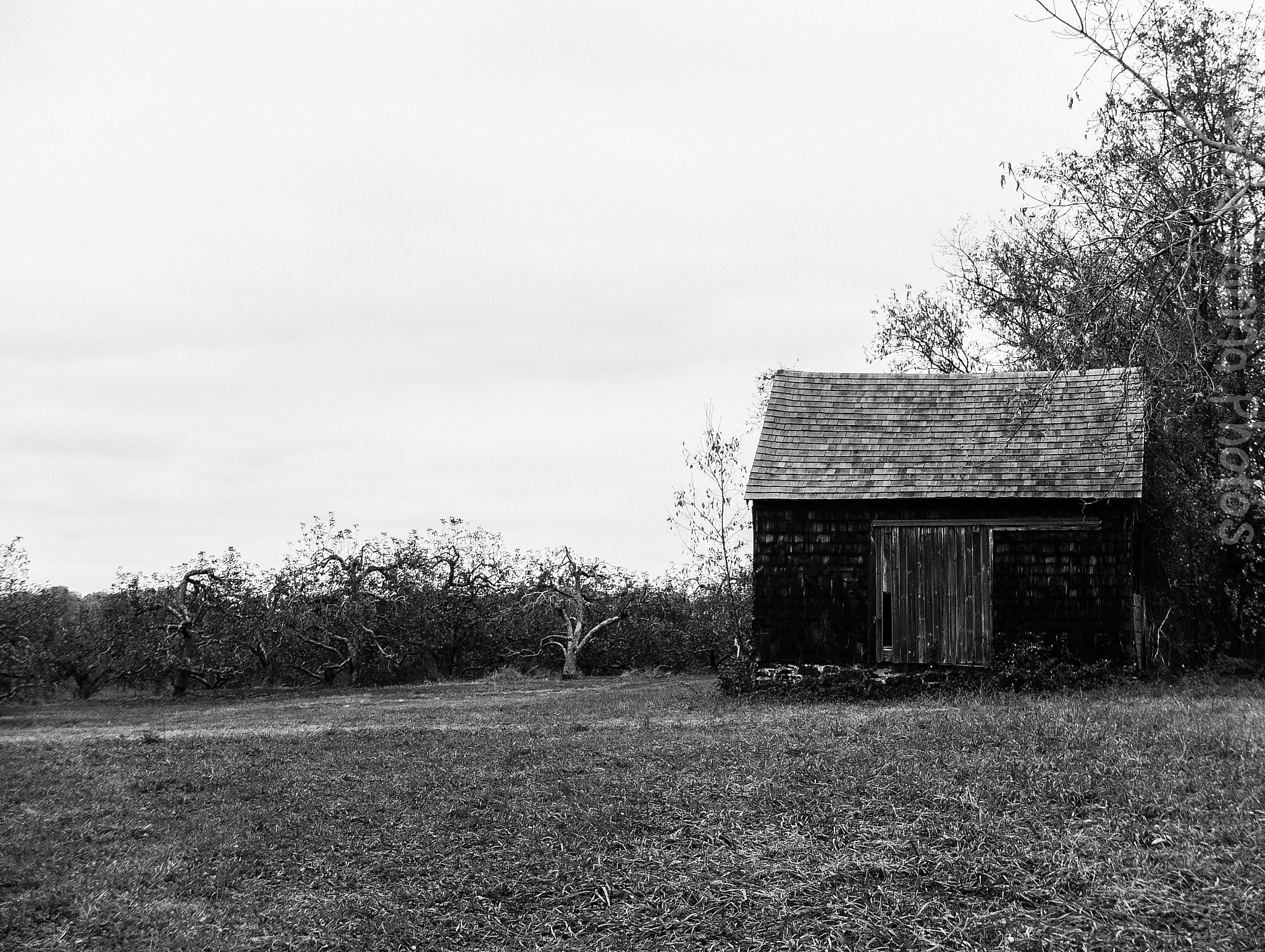 Photograph Apple shed on the by Joseph Castoire on 500px