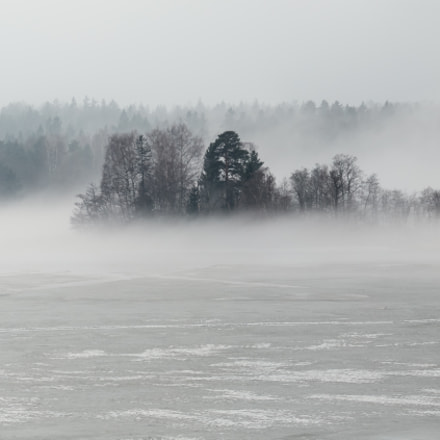 Wintery fog over the, Canon EOS 7D MARK II, Canon EF 24-105mm f/4L IS USM