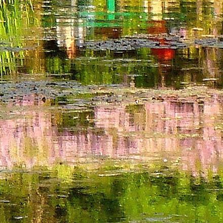 Mr Monet's Pond, Sony DSC-T100