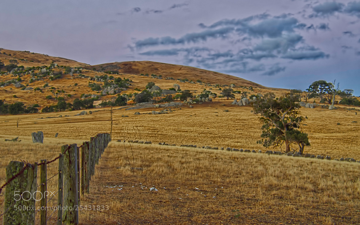 Photograph Paddock fence by Pieter Pretorius on 500px