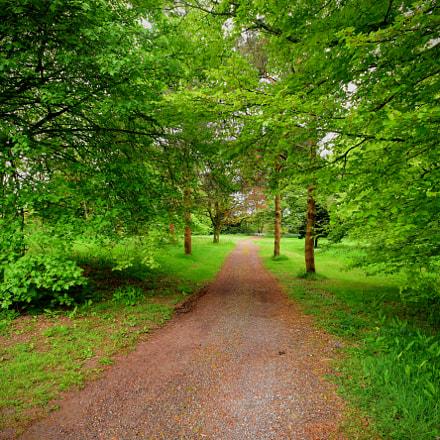 Walk in nature!, Nikon D7200, Sigma 10-20mm F4-5.6 EX DC HSM
