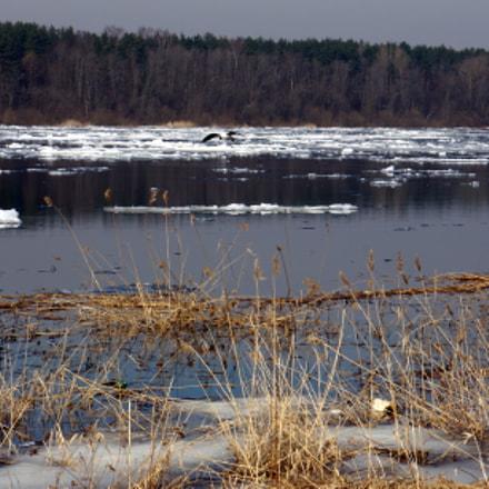 По Неве идёт Ладожский лёд. Весна., Sony NEX-5R, Sony E 18-55mm F3.5-5.6 OSS