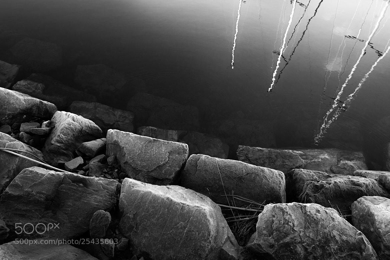 Photograph Harbor by Bjarte Haugland on 500px