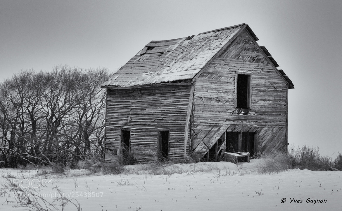 Photograph The Old House by Yves Gagnon on 500px