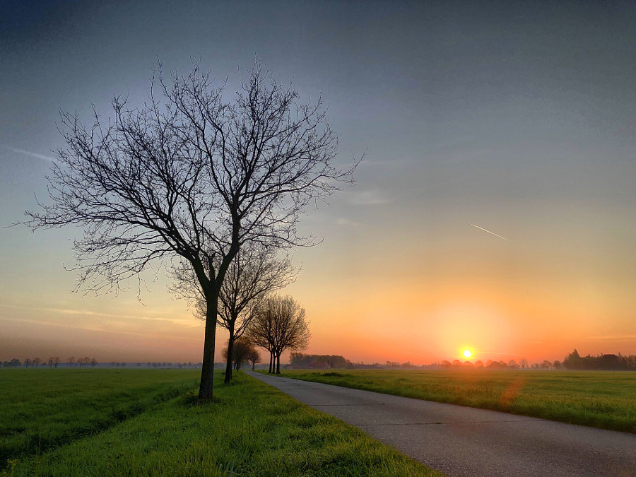 Countryside sunrise  by Bjorn Beheydt on 500px.com