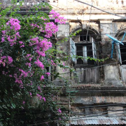 Yangon, Canon EOS KISS X6I, Canon EF-S 15-85mm f/3.5-5.6 IS USM