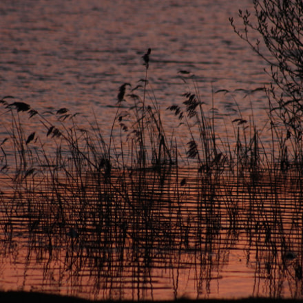 sunset on a lake, Canon EOS 700D, Canon EF 75-300mm f/4-5.6 USM