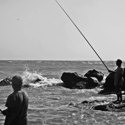let's take some fish, Canon EOS 400D DIGITAL