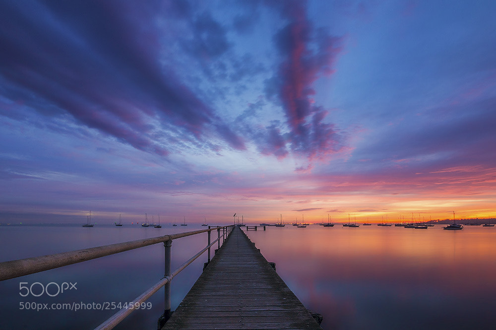 Photograph Pink, Purple and Orange by Dave Cox on 500px