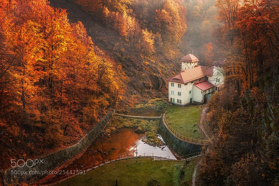 Photograph Valley by Miroslaw Brzozowski on 500px