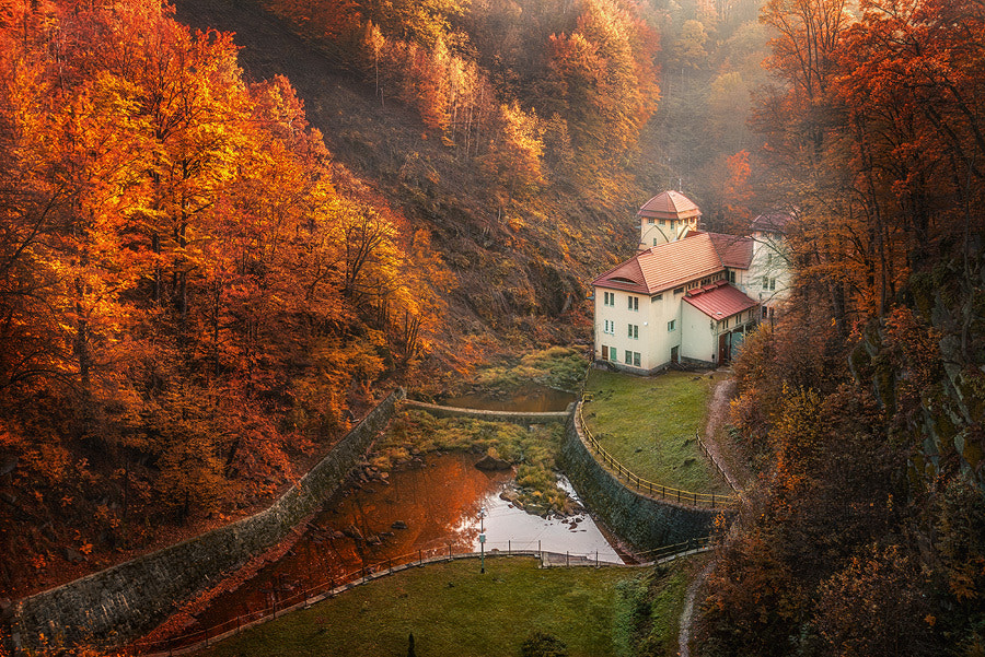 Photograph Valley by Miroslaw Brzozowski on 500px