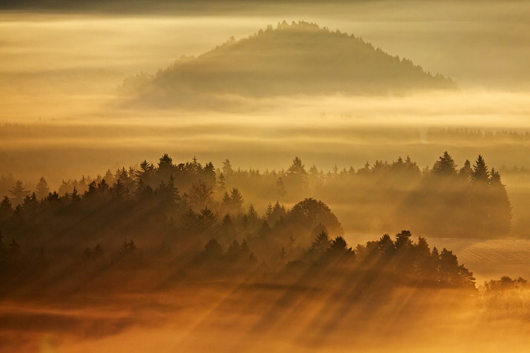 Photograph Golden Morning by Martin Rak on 500px