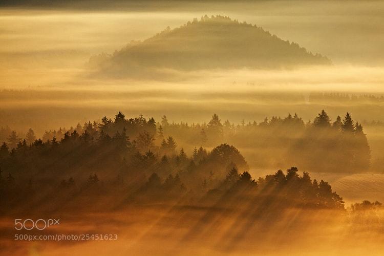 Photograph Golden Morning by Martin Rak on 500px