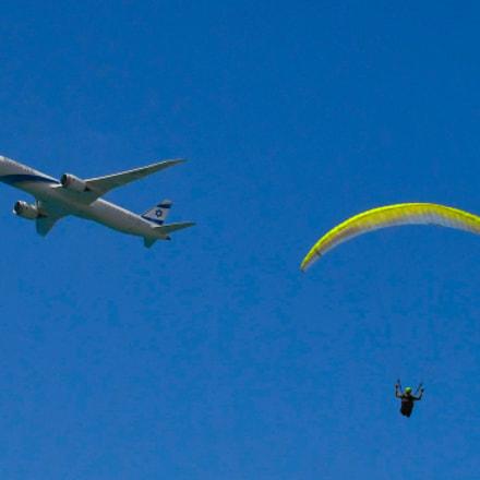 Flying Around, Nikon D500, AF-S DX Nikkor 18-300mm f/3.5-5.6G ED VR