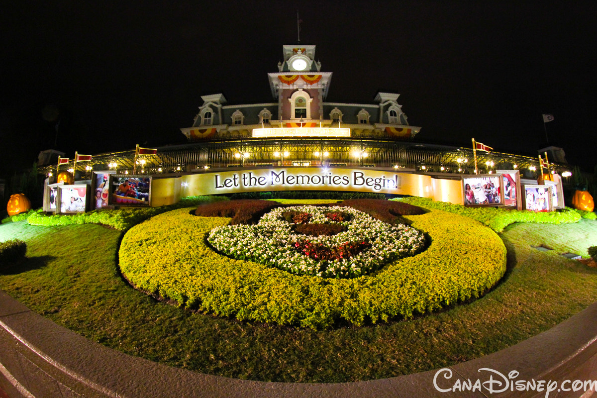 Photograph Magic Kingdom by Crystal Young on 500px