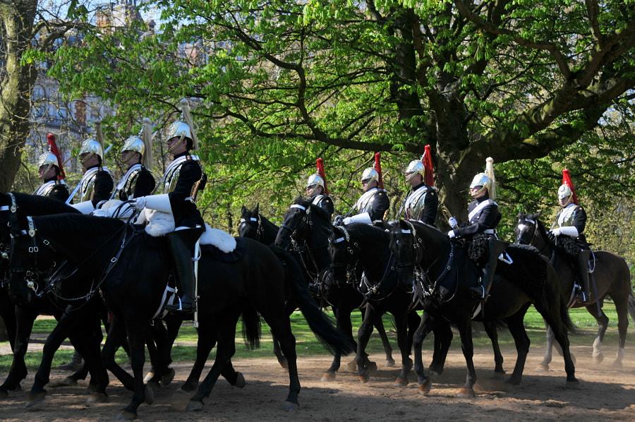 Hyde Park, London by Sandra  on 500px.com