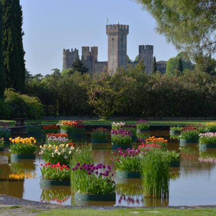 Castello di Valeggio sul, Nikon D500, Sigma 70-200mm F2.8 EX DG OS HSM