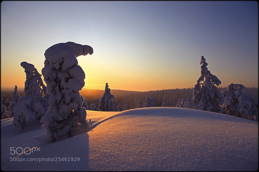 Photograph Winter sun ... by Valtteri Mulkahainen on 500px